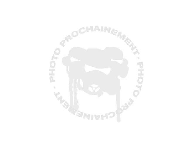 Salopette d'atelier Piaggio bleu / gris M